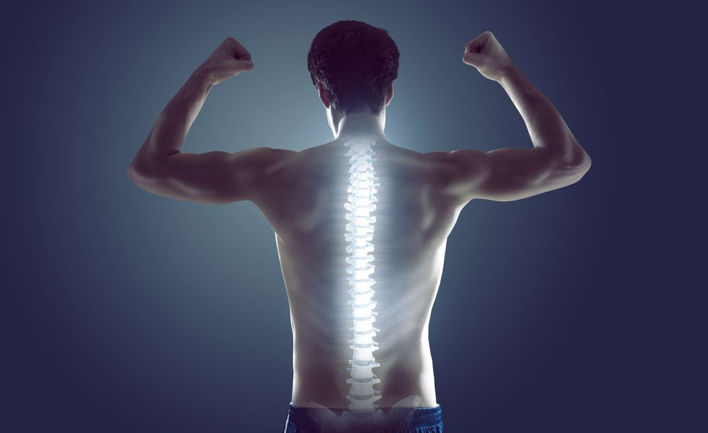 10-tips-to-keep-your-spine-happy-and-healthy-premier-injury-clinics-of-dfw